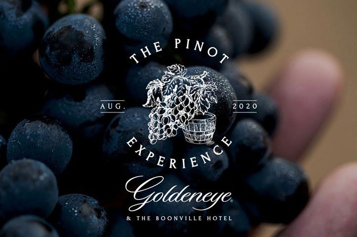 The Pinot Experience in Anderson Valley, one weekend of wine from vine to bottle