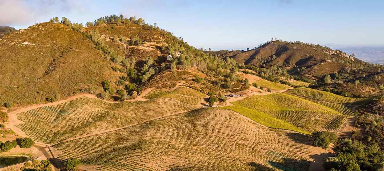 Calera Chardonnay Feature Image